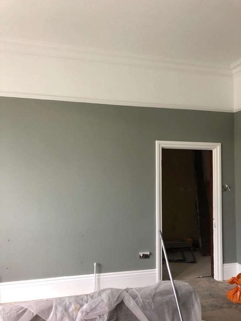 Painted feature wall with white ceiling and skirting boards