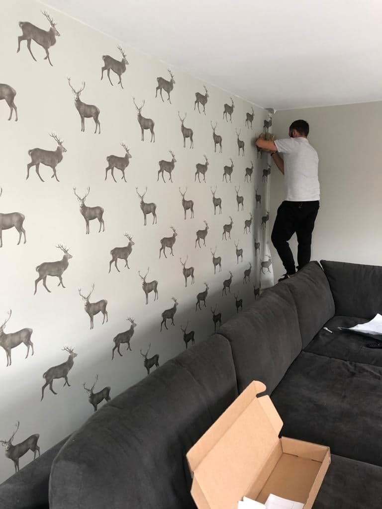 Feature wallpaper being fitted by decorator